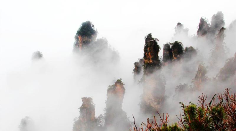世界自然遗产张家界武陵源风景名胜区冬雨霏霏,天子山景区现云雾仙景